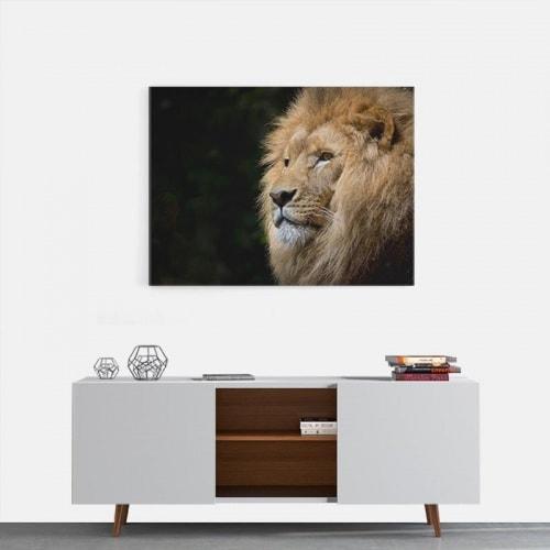 Canvas Leeuw op de uitkijk 2