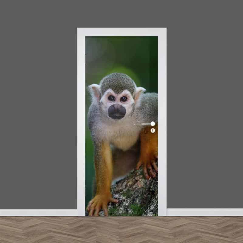 Deursticker Klein aapje