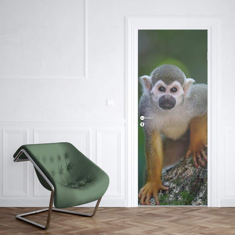 Deursticker Klein aapje 1