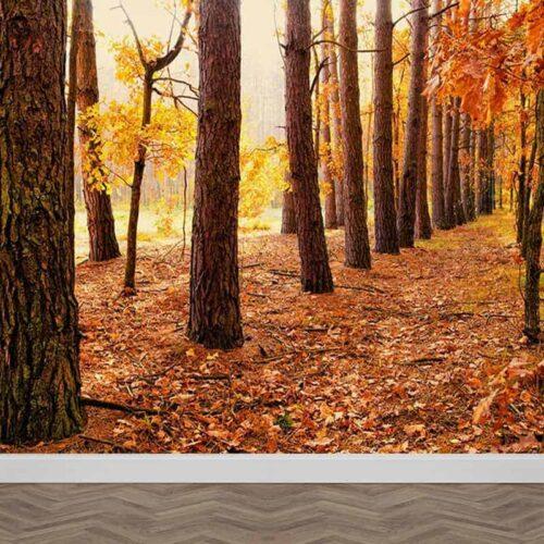 Fotobehang Gevallen bladeren