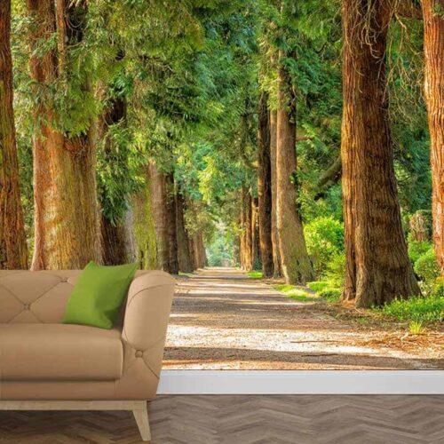 Fotobehang Laan met bomen 1