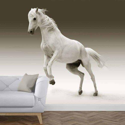 Fotobehang steigerend paard 2