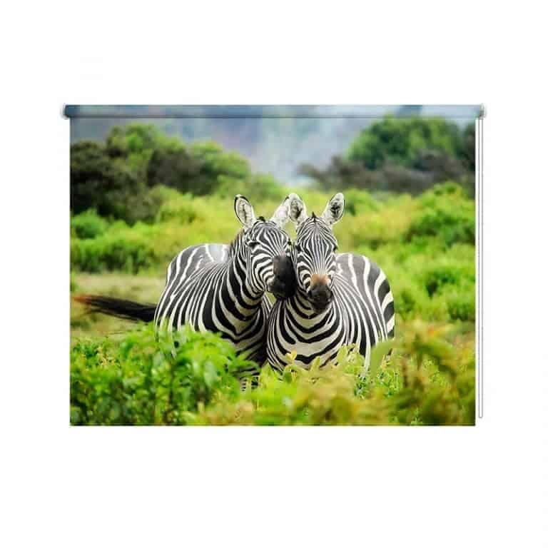 Rolgordijn Knuffelende zebra's