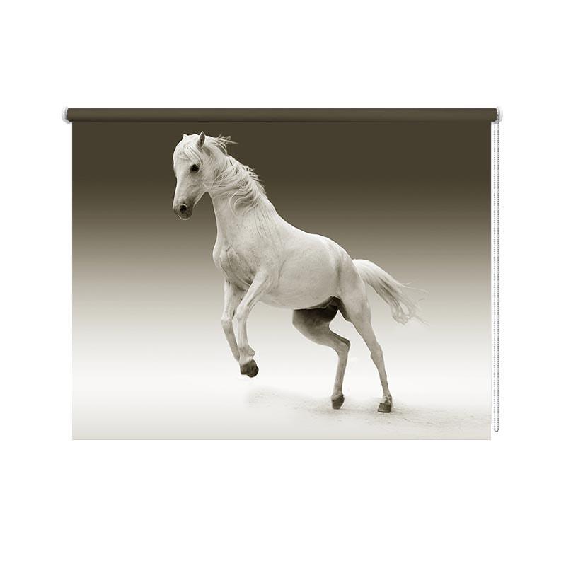 Rolgordijn Steigerend paard