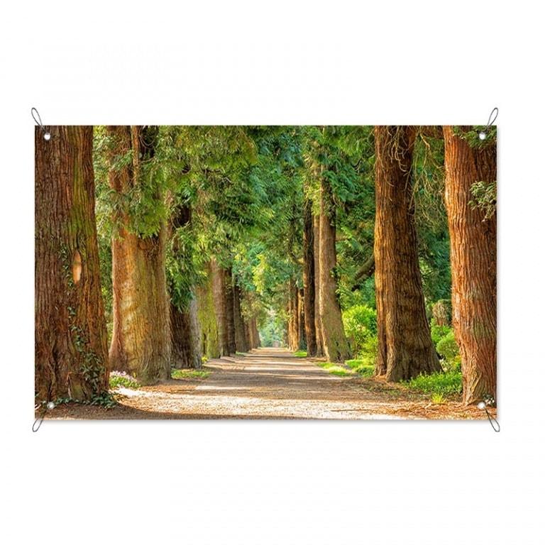 Tuinposter Laan met bomen
