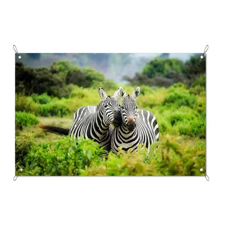 Tuinposter knuffelende zebra's