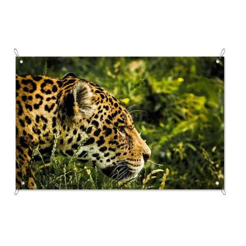 Tuinposter Luipaard