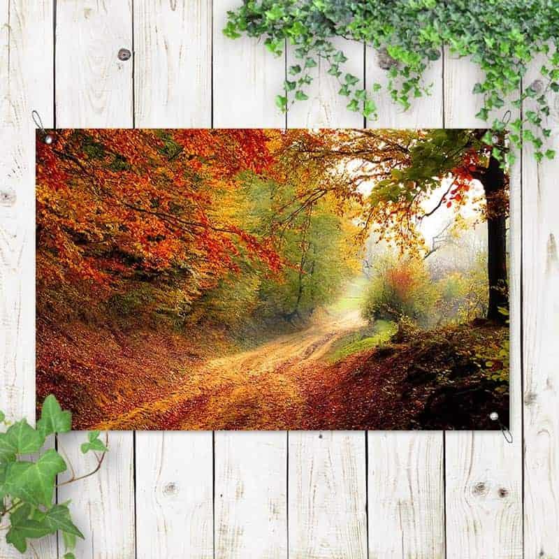 Tuinposter bospaadje in de herfst 1