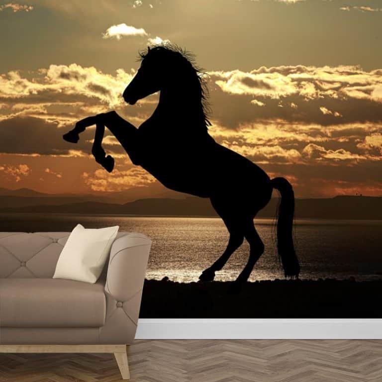 Paard in avondzon 2