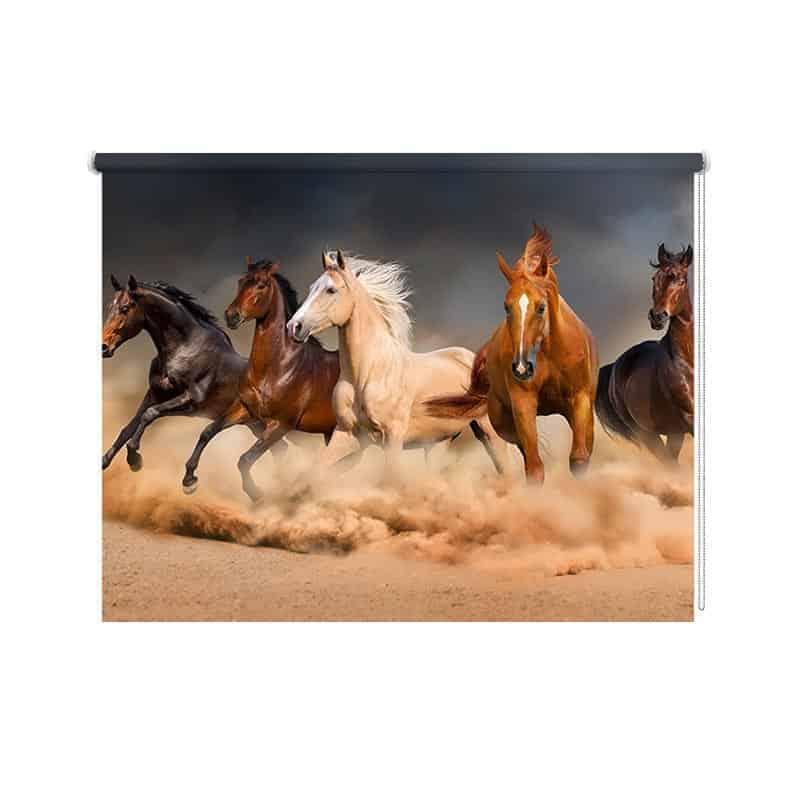 Rolgordijn Galopperende paarden