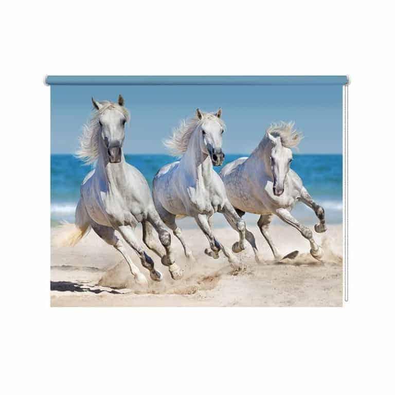 Rolgordijn Paarden op het strand