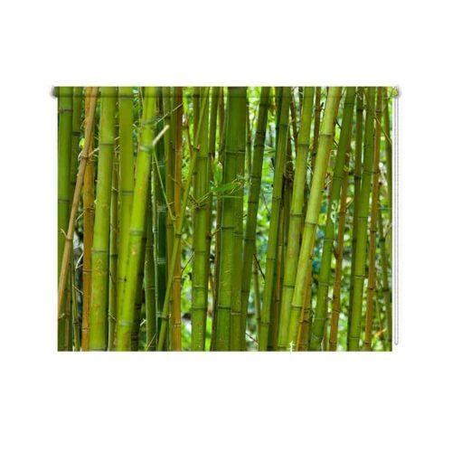 Rolgordijn Groene bamboe
