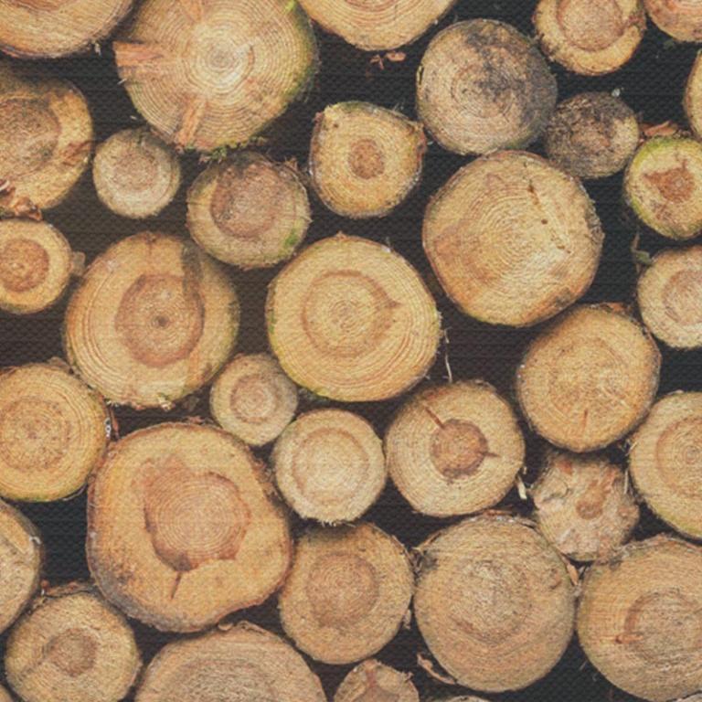 Tafelkleed Gestapelde boomstammen