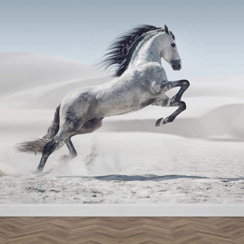 Fotobehang Steigerend wit paard