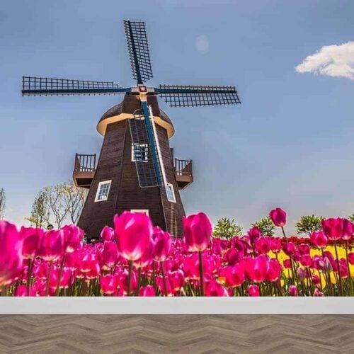 Fotobehang molen met tulpen