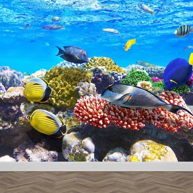 Fotobehang aquarium