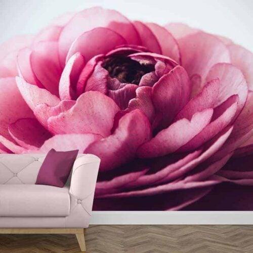 Fotobehang roze pioenroos 1