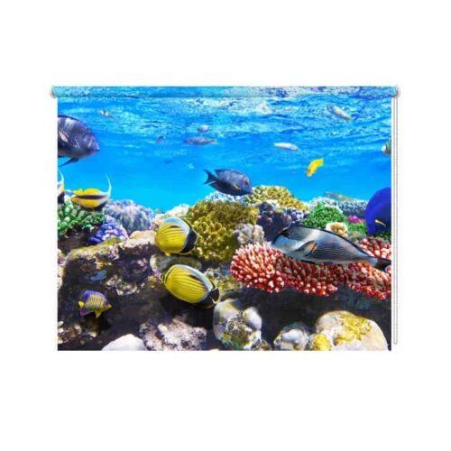 Rolgordijn Aquarium