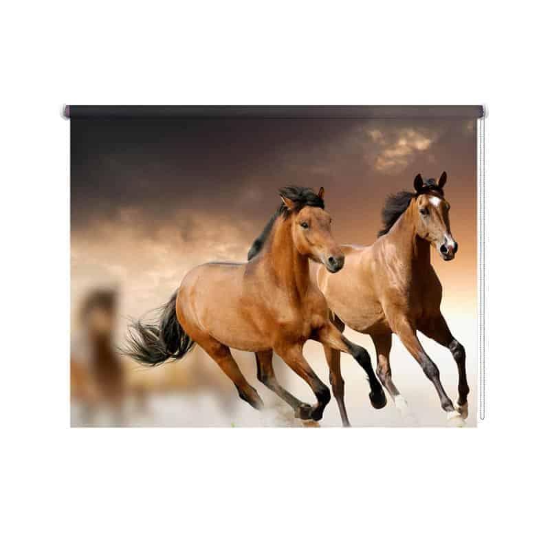 Rolgordijn paarden