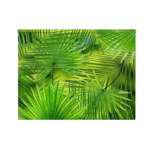 Rolgordijn grote palmbladeren