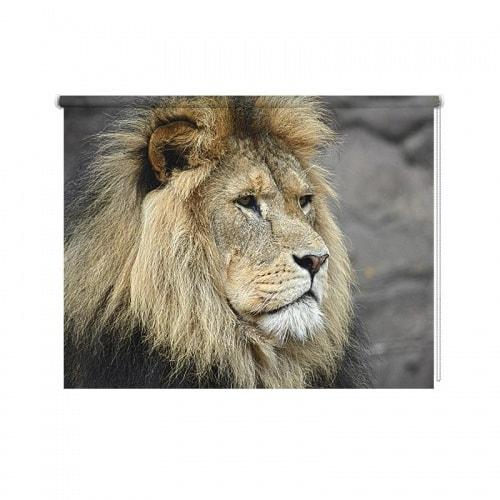 Rolgordijn Koning van de jungle