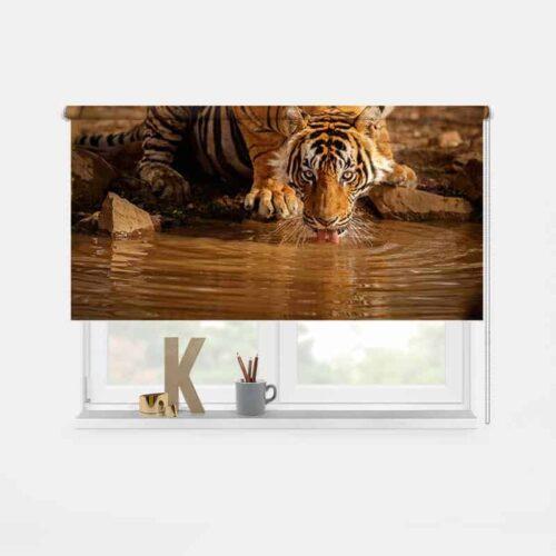 Rolgordijn drinkende tijger