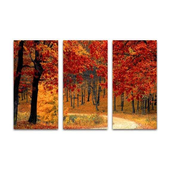 Drieluik canvas herfst in het bos