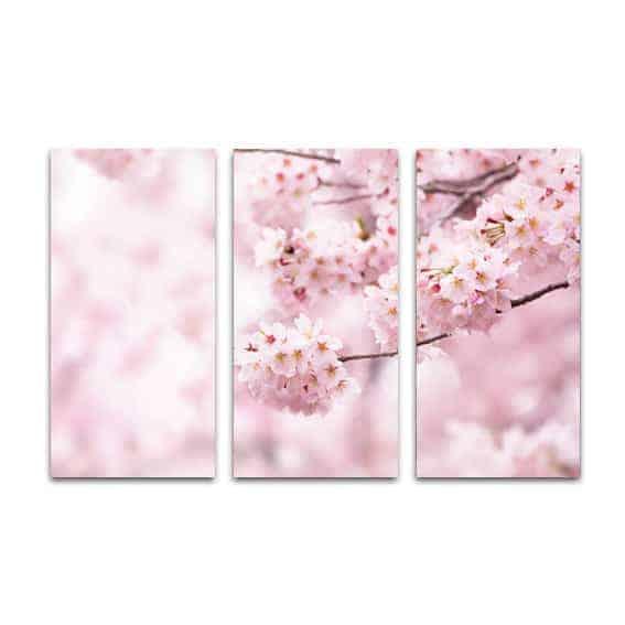 Drieluik canvas Japanse kers