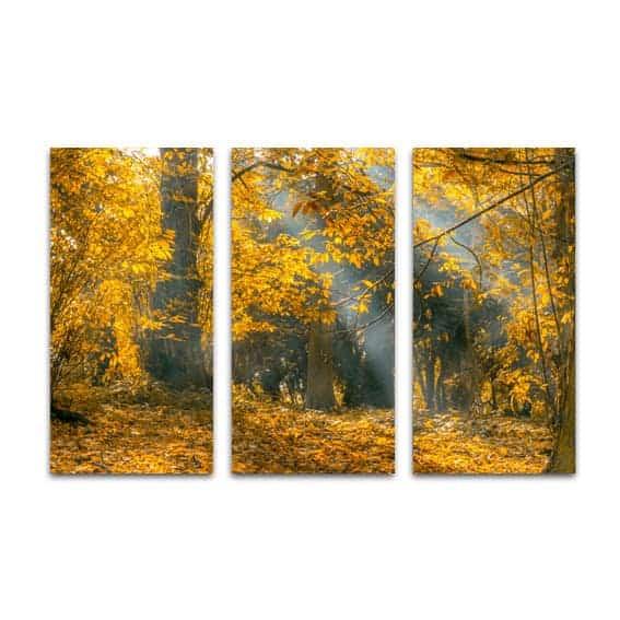 Drieluik canvas zonnestralen in herfstbos
