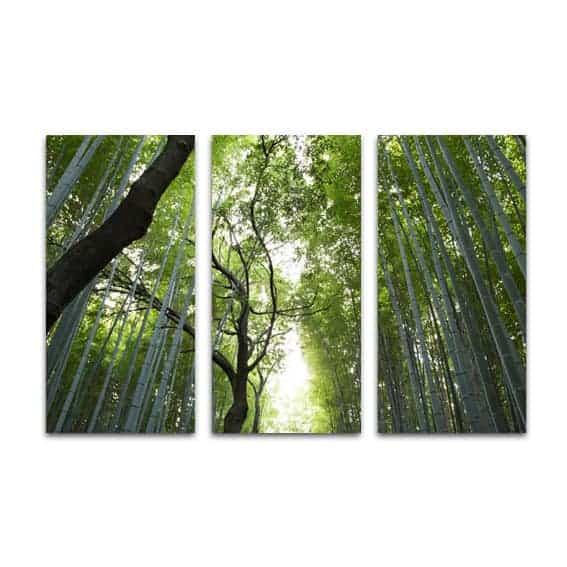 Drieluik canvas bamboe oerwoud