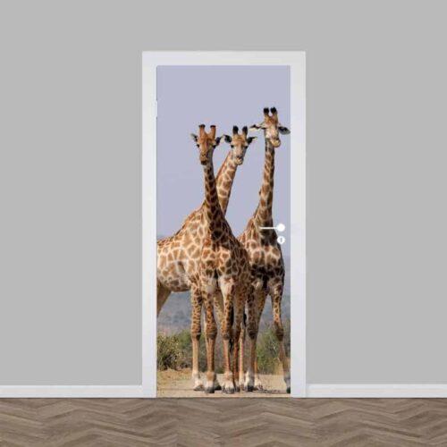 Deursticker starende giraffe