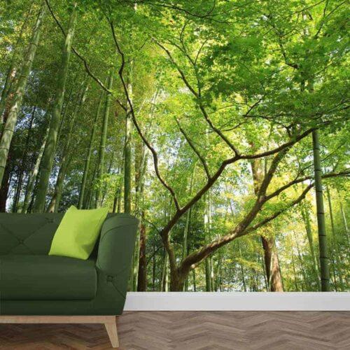 Fotobehang in het bamboebos
