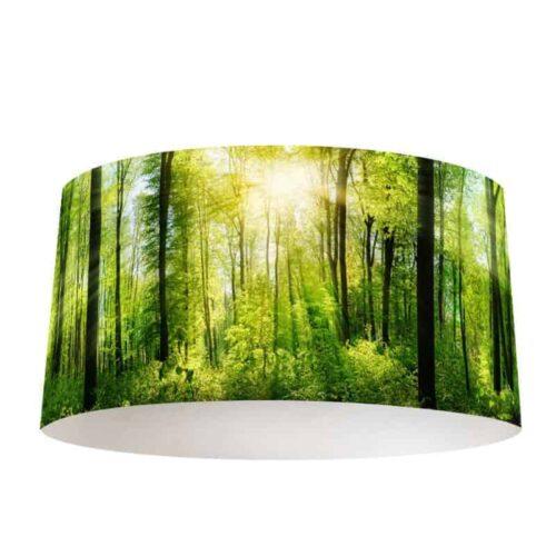 Lampenkap zon in bos