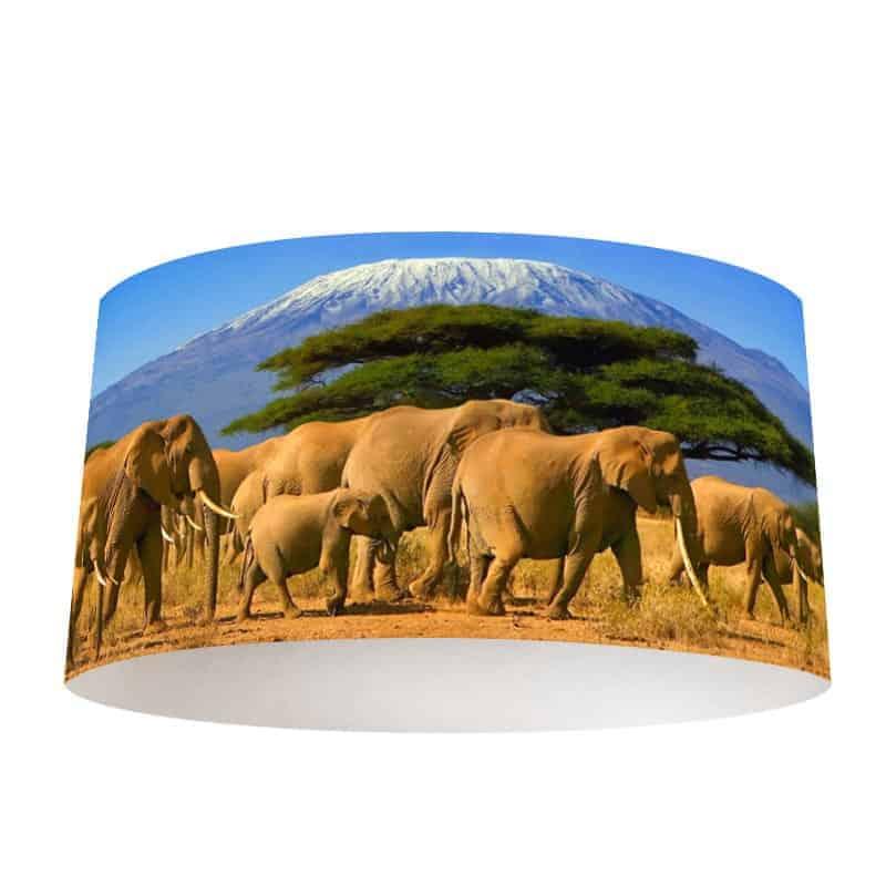 Lampenkap olifanten bij kilimanjaro
