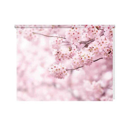 Rolgordijn Japanse kers in bloei