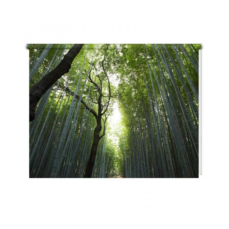 Rolgordijn In het bamboe bos
