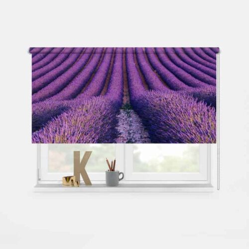 Rolgordijn lavendelveld
