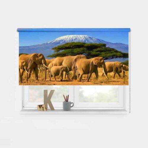 Rolgordijn olifanten bij kilimanjaro