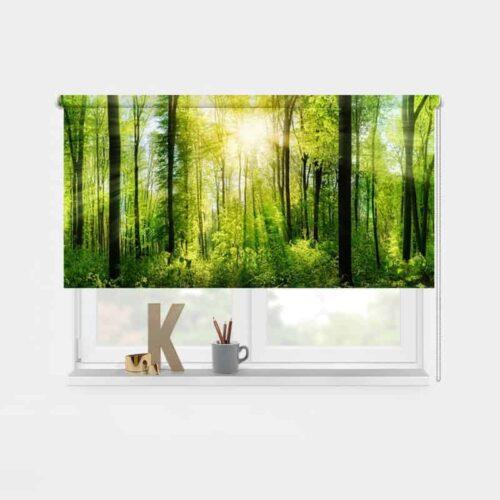 Rolgordijn Zon in bos