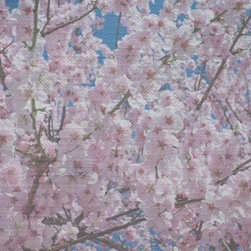 Tafelkleed Lentebloemen