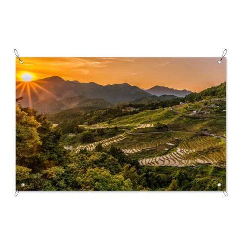 Tuinposter rijstplantage