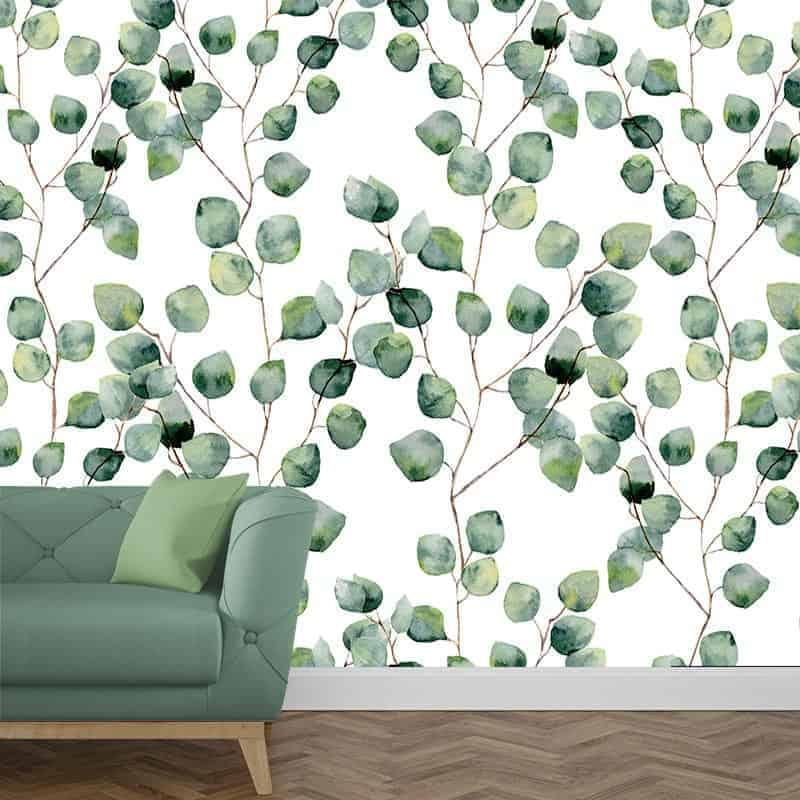 Fotobehang Eucalyptus blaadjes