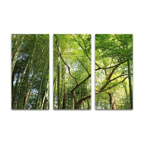Drieluik canvas in het bamboebos