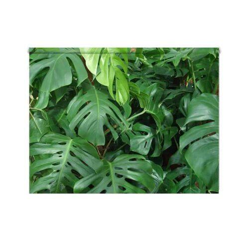 Rolgordijn groene planten