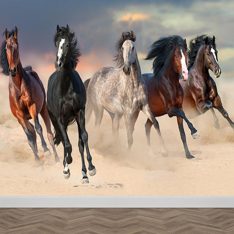 Fotobehang paarden in galop