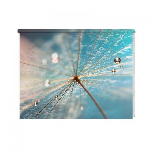 Rolgordijn dandelion met waterdruppels
