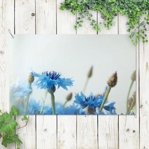 Tuinposter Blauwe bloemen vintage