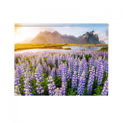 Rolgordijn Great view of lupine flowers