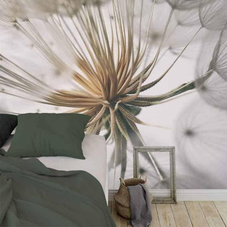 Fotobehang dandelion wit grijs