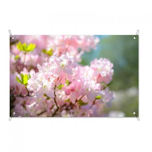 Tuinposter Prunus bloesems